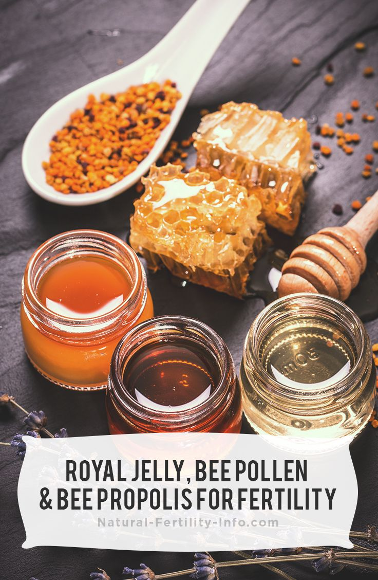 Bees are amazing creatures. They produce a wide variety of substances, many of which have been found to have great health benefits for not only the bees, but humans as well.     #royaljelly #beepollen #beepropolis #fertility #infertility #naturalfertility #NaturalFertilityInfo #NaturalFertilityShop