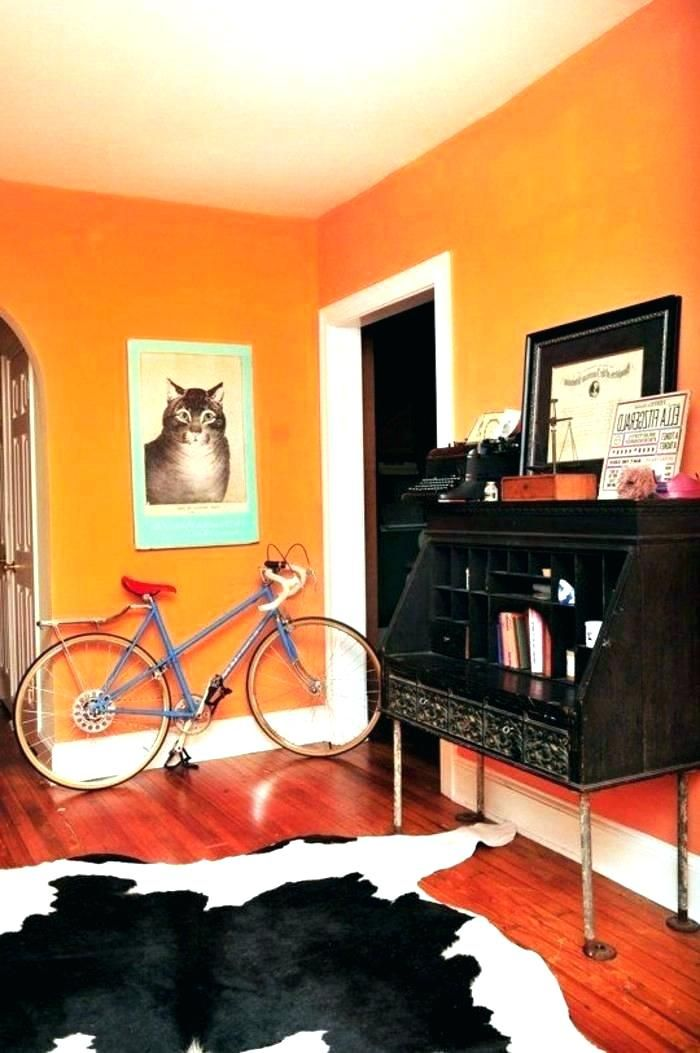 Image Result For Orange Wall Color Wall Color Wall Colors Wall