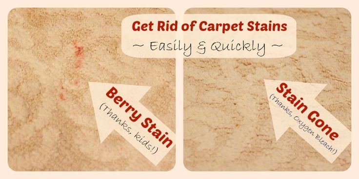 Best 25+ Clean carpet stains ideas on Pinterest | Carpet ...
