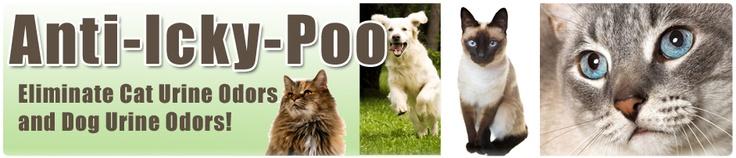 Pet Urine Cleaner : Anti-Icky-Poo