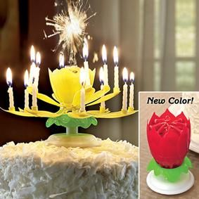 "Happy Birthday Fireworks Candle *****5Star Rating...Musical fireworks candle creates a visual spark for birthdays! Get ready for a real show! Simply place the candle in your cake and light the center sparkler. The flame ignites the 14 mini candles, creating a jaw-dropping pyrotechnic display. As the side ""petals"" slowly unfold, the entire candle spins while playing ""Happy Birthday"". $8+"