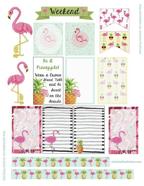 FREE PRINTABLES Flamingo Happy Planner stickers bujo agenda