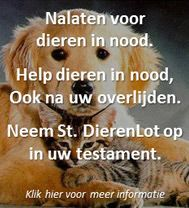 Het dierenwelzijn laat veel te wensen over, ook in Nederland. Stichting DierenLot trekt zich het lot van deze dieren erg aan. Vele dieren leiden een buitengewoon beroerd bestaan.
