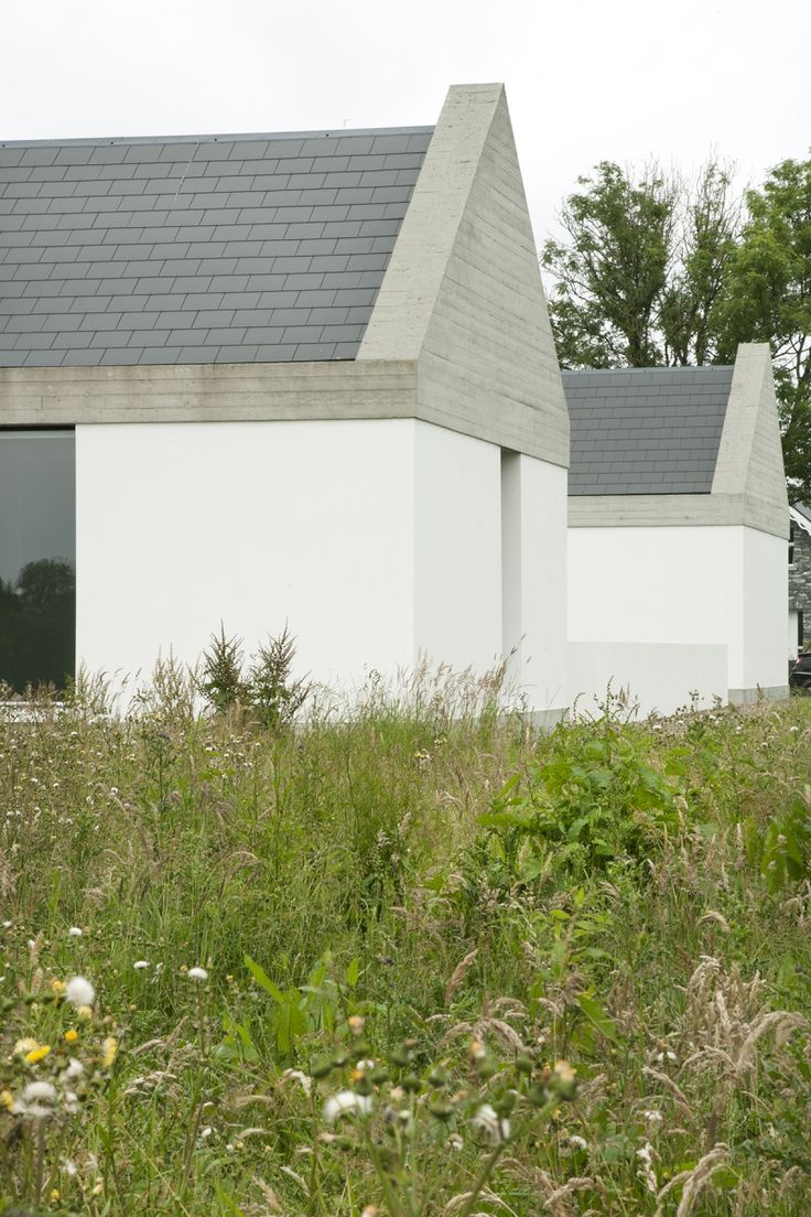 Ryan W. Kennihan Architects build for Leagaun House Galway