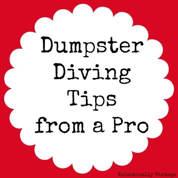 Dumpster Diving Tips From a Pro