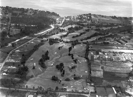 1948. One of the first aerial photo's of Green Bay, taken in 1948, looking south down Portage Road  N.Z. Herald collection, Auckland Museum negative H2080 . From Green Bay to Gondwanaland