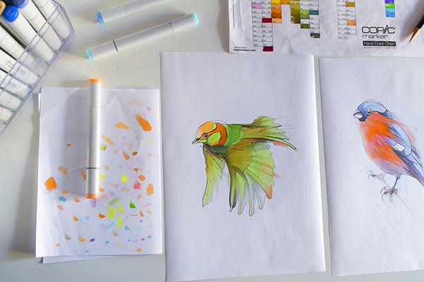#bird #illustration #drawing #copicmarkers #copicart #aves