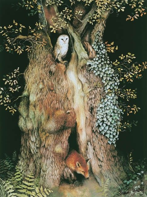 "Barn Owl and Fox In Old Oak Tree ~ water color illustration from the children's book ""The Acorn's Story,"" by artist Valerie Greeley  . . . .   ღTrish W ~ http://www.pinterest.com/trishw/  . . . .  #fox #owl  #mytumblr"