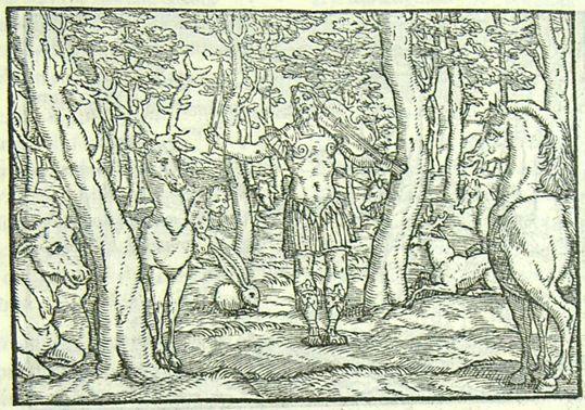 Orphée charmant les animaux des bois (L. Dolce Trasformationi Venise 1553)