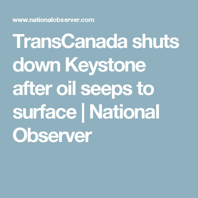 TransCanada shuts down Keystone after oil seeps to surface | National Observer