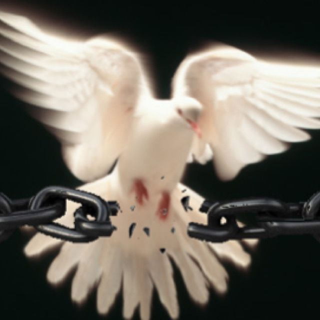 Holyspirit break every chain                                                                                                                                                     More