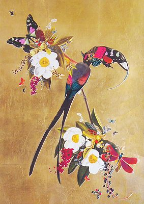 Langi Tagl Audubon Gold Leaf £580.00  By Kristjaja S Williams 42x29cm Archival Giclée print hand finished with Gold Leaf! Hahnemulhe paper 308gsm Edition of 25    http://www.deepwestgallery.co.uk/product-page/abcc4f80-55b0-807a-a7e9-022537f9e53f