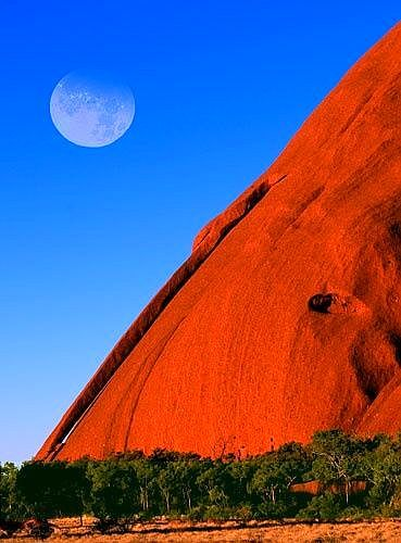 Avant's Principal has visited Indigenous sites over many years, this is one ancient art piece that she photographed.