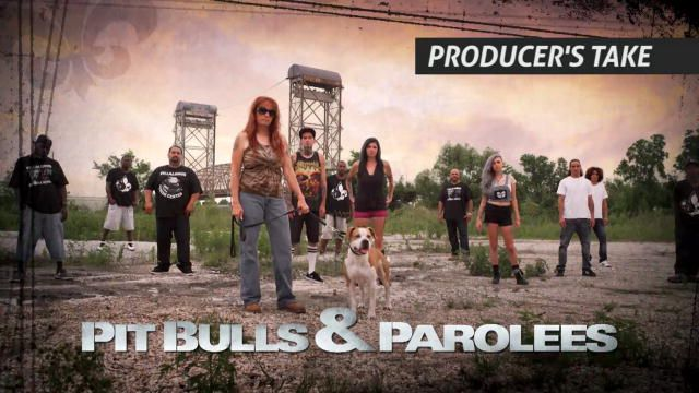Pit Bulls and Parolees: Animal Planet. Show about rescuing pitbulls in different scenarios.