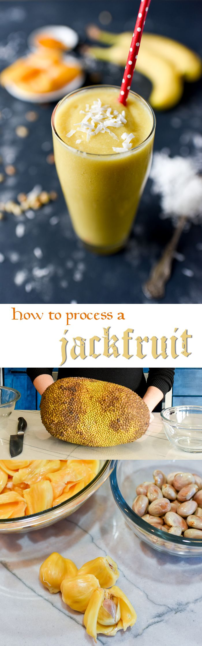 How to process a fresh, ripe jackfruit, and a tropical smoothie recipe!