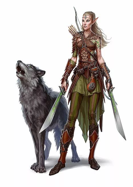 Ranger - two weapon fighting, wolf companion