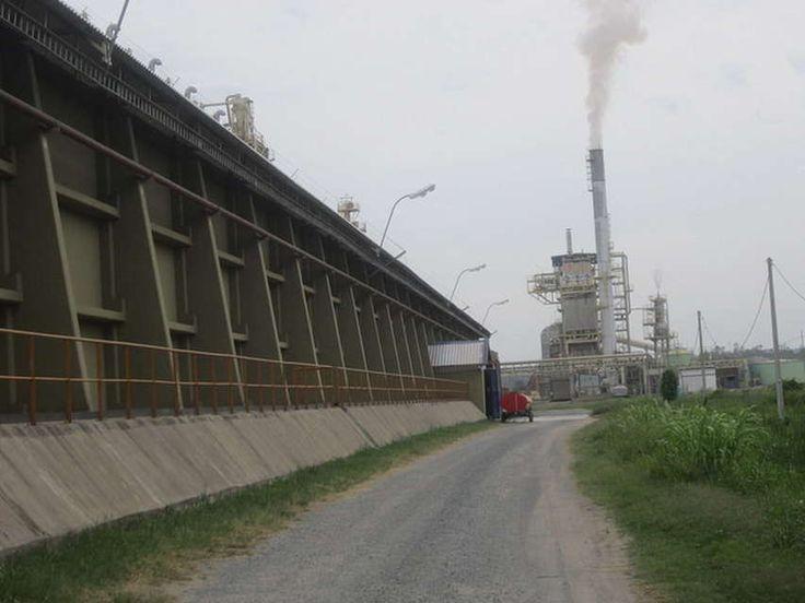 La soja alimenta la industrialización en Paraguay