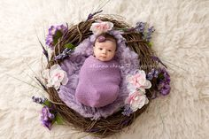 Eugene and Springfield, Oregon Newborn Photography floral wreath nest