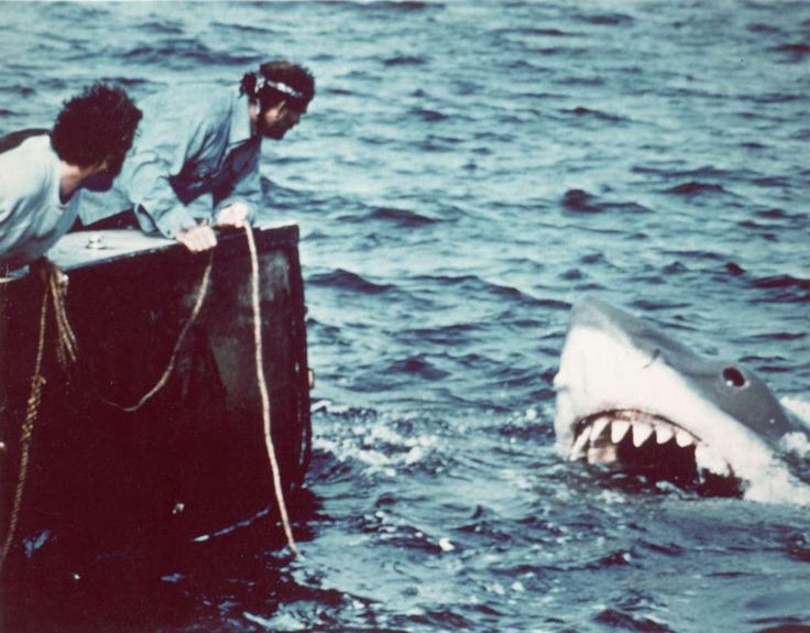American actor Richard Dreyfuss (left) (as marine biologist Hooper) and British author and actor Robert Shaw (as shark fisherman Quint) look off the stern of Quint's fishing boat the 'Orca' at the terrifying approach of the mechanical giant shark dubbed 'Bruce' in a scene from the film 'Jaws' directed by Steven Spielberg, 1975. The movie, also starring Roy Scheider and Lorraine Gary, was one of the first 'Summer Blockbuster' films. (Photo by Universal Pictures courtesy of Getty Images)…