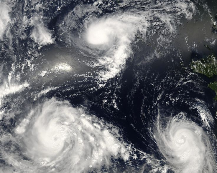 In August 2006, a NASA satellite captured this image of three angry sisters in the western Pacific Ocean. This trio of storms formed within three days of each other. The youngest storm, Typhoon Bopha (top) is barely organized into a tropical storm, with no eye and only the most basic round shape. Tropical Storm Maria (bottom right) is a day older and has formed a central eye and a spiral shape. The most powerful of the triplets, Typhoon Saomai (bottom left) is fully formed and roaring with…