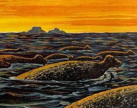 Stellers Sea Cow Steller's sea cow was first discovered in 1741 by explorers that ventured into parts of the Arctic Circle.