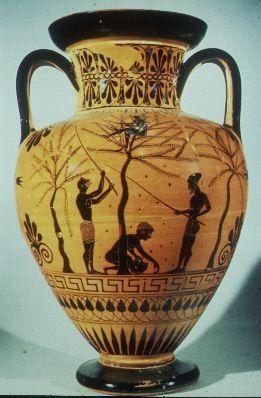 Olive harvest http://www.historyforkids.org
