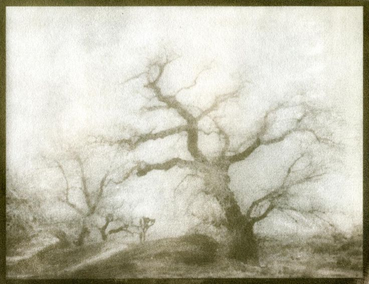 One of my own gum bichromate prints. This is a true photographic process that uses a gum bichromate mixture on watercolor paper and negative. None of this is photoshopped.