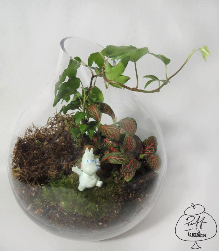 #moomin #puffterrariums #recycle #puff #terrariums #terrarium #home #work #business #decor #decoration #plant #garden #mini #minitureworld #wedding #centerpiece #weddingfavors #moss #reindeermoss #mason #balls #mushroom #apartmenttherapy #christmas #gift #DIY #crafts
