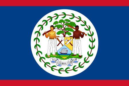 Free Belize flag graphics, vectors, and printable PDF files. Get the free downloads at http://flaglane.com/download/belizean-flag/