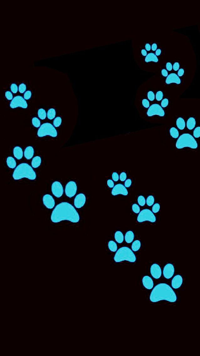 Blue paw prints