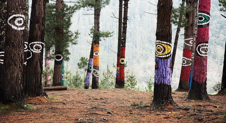 Bosque de Oma. Urdaibai. Bizkaia. © Inaki Caperochipi Photography