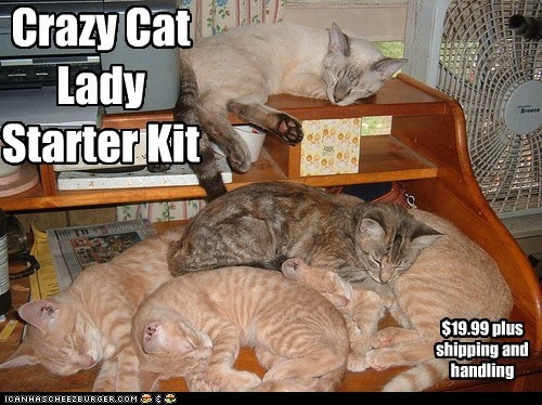 Auf crazy russian cat lady