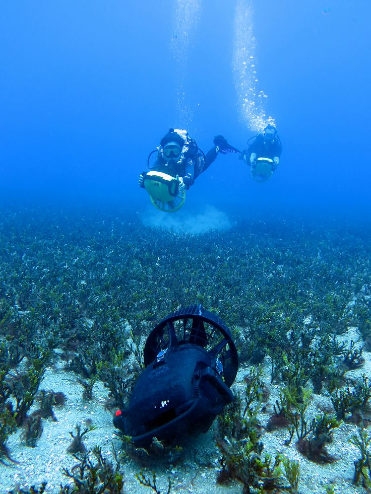 50 best images about dive on pinterest military special for Dive scooter