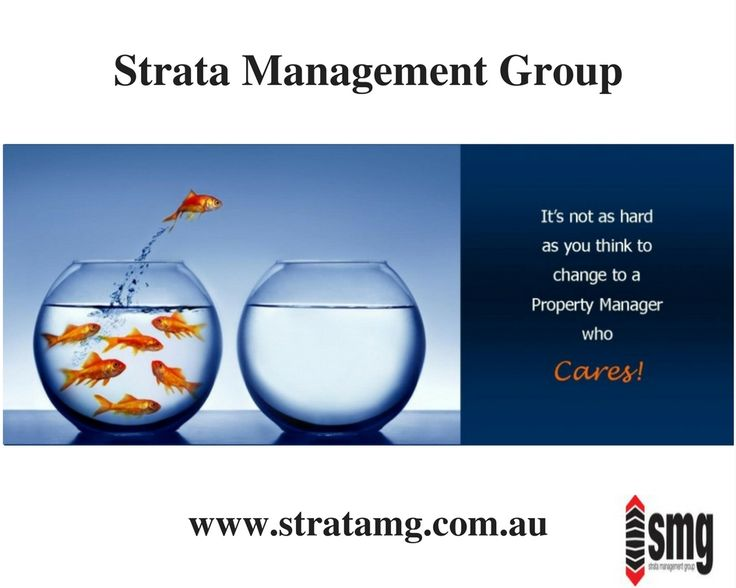 how to start a strata management company