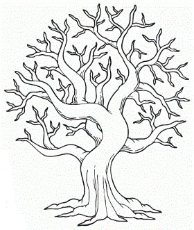 autumn tree coloring pages - photo#33