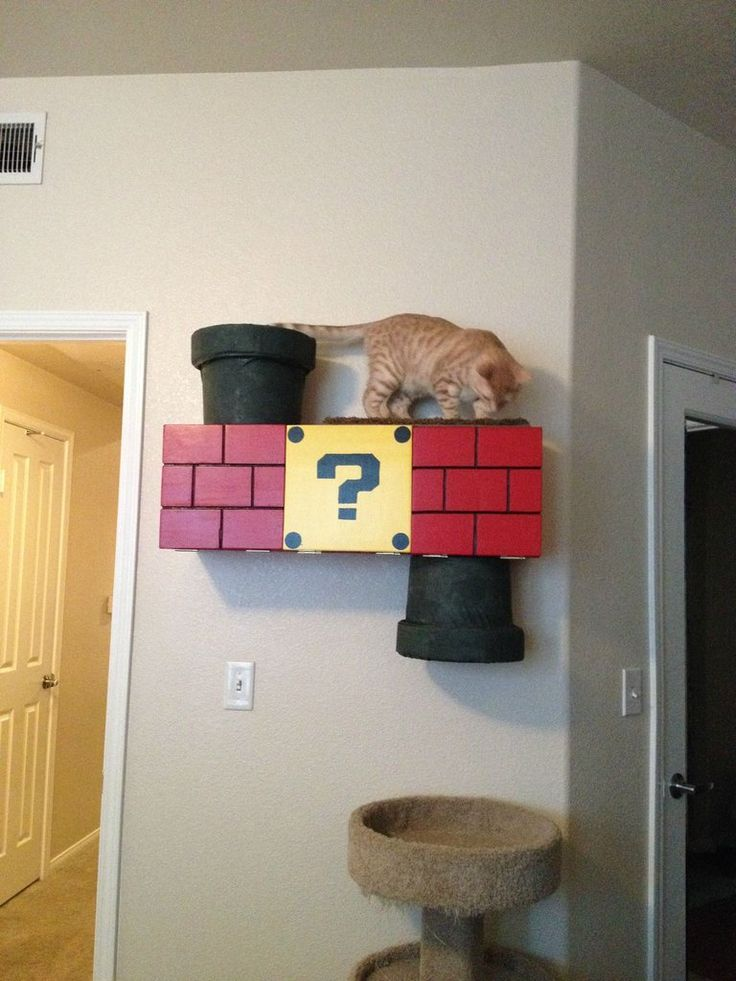 This is so gonna happen Nintendo Themed Cat Climber - Imgur