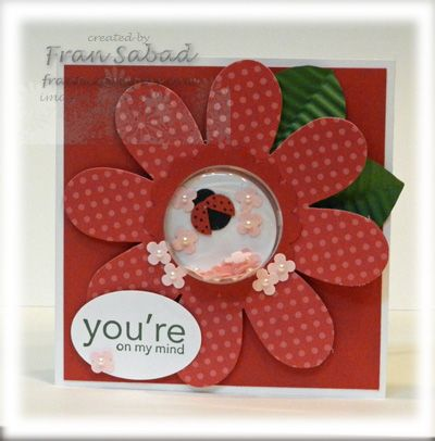 Cute as a lady-bug shaker card! Made by Fran  Sabad at www.stampersblog.fanticstampers.com