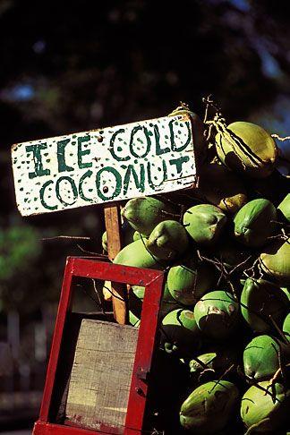 Trinidad, Port of Spain, Coconuts for sale