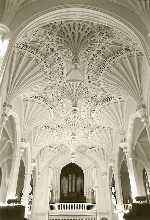 An amazing church in Charleston, South Carolina. Do you see the spectacular plastered fluted borders across the ceiling & how they cascade down into arched pillars?!!!