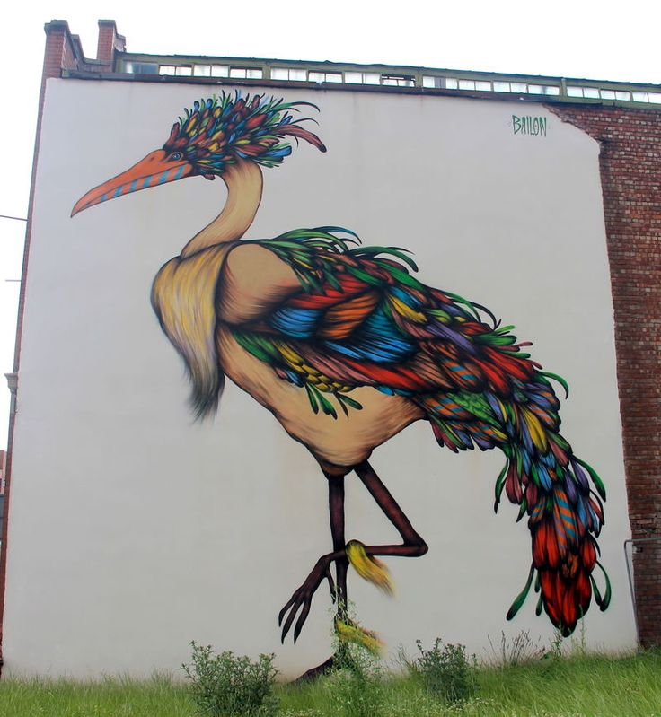 Giant bird, autor: Mateus Bailon z Brazylii - street art Manchester