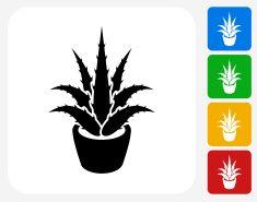 Aloe planta de iconos planos de diseño gráfico vector art illustration