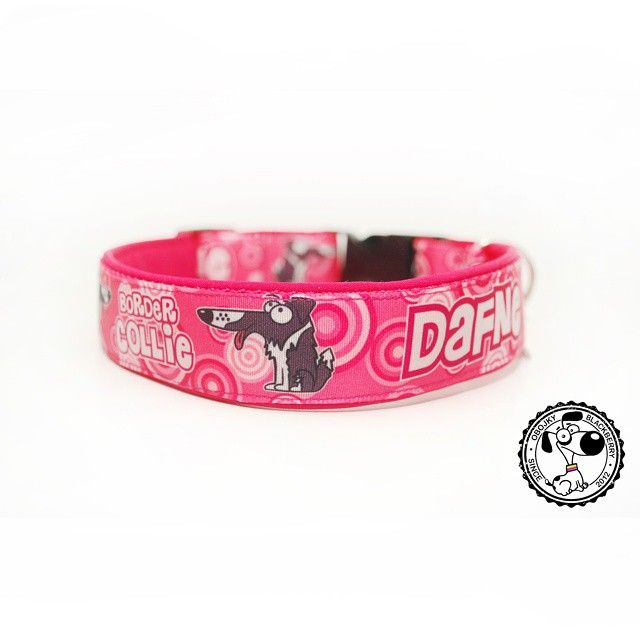 Obojek s grafikou | Collar with graphic #dafne #bordercollie #borderkolie #collie #collar #newcollar #nicecollar #obojek #novyobojek #obojeksejmenem #collarwithname #pink #ruzova #goodsfordogs #dog #vecipropsy #pes #nicecollar #obojkyblackberry #blackberrycollars #byblackberry #odblackberry