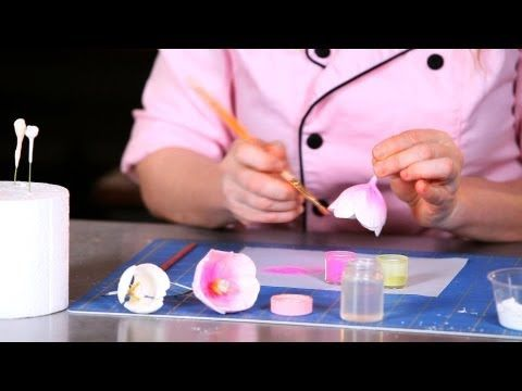 How to Make Sugar Flowers: Tulips, Part 4 | Easy Cake Decorating Flowers - YouTube