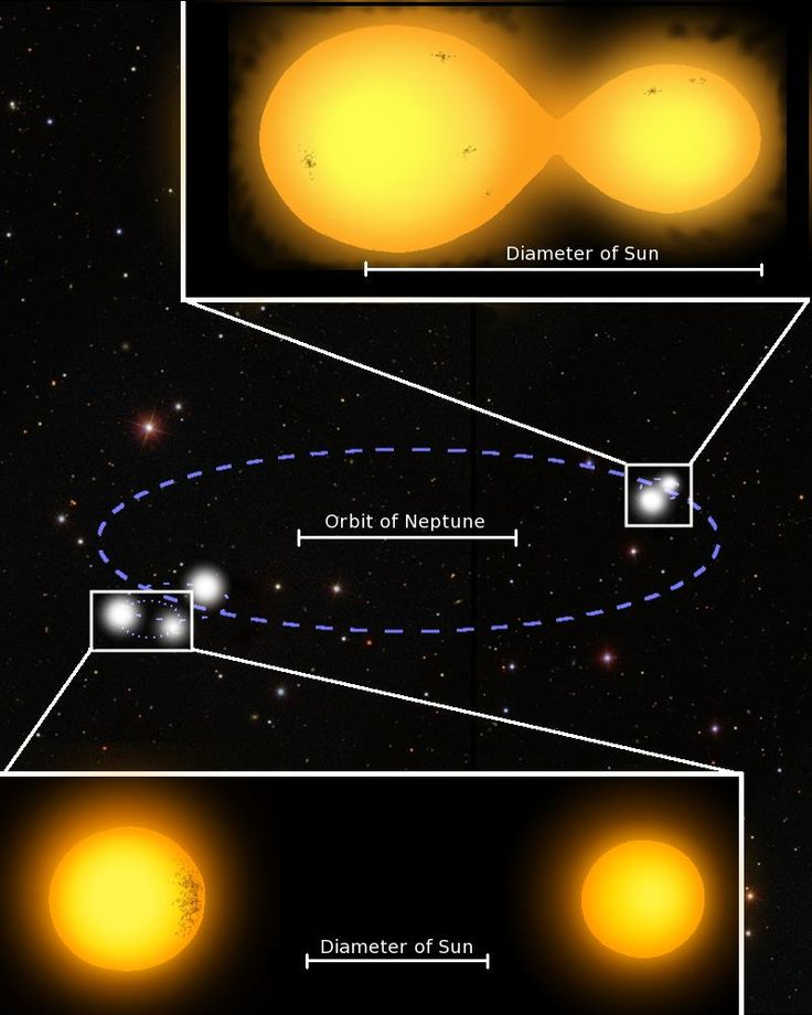 This diagram depicts the quintuple star system to scale, using Neptune's orbit around the Sun for reference.