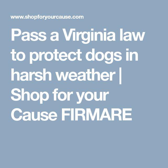 Virginia Law On   Civil Court Cases Loving V Virginia