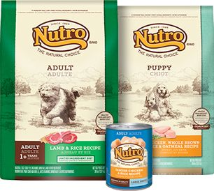 Natural Choice Dog Food