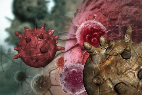 Diverses recherches montrent que l'alimentation a une grande incidence sur les maladies et les indispositions dont nous souffrons au quotidien.
