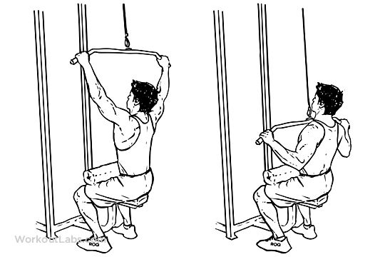 Wide-Grip Lat Pulldowns / Pull Downs / Pullovers