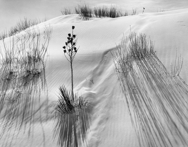 Ansel Adams Dune, White Sands National Monument, NM 1948 National Parks