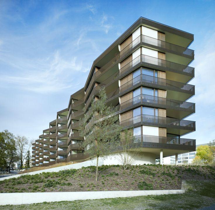 Bau der Woche: Wohnüberbauung «Am Herterweiher» - Morger + Dettli Architekten AG BSA/SIA